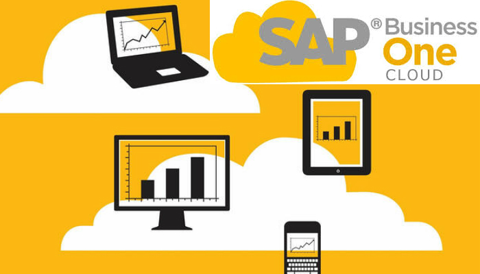 SAP Business One Cloud 2